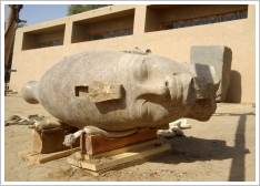 (c)SCA - Colossal Head of Amenhotep III