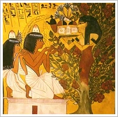 TT1, Tomb of Sennedjem - Nut in a sycamore fig